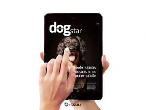 anuncio-revista-web-300x225-2