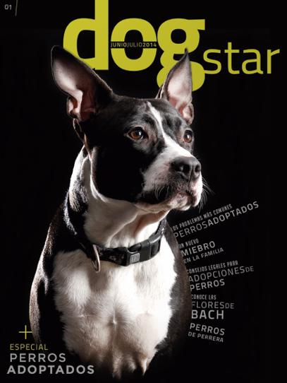 Dogstar | 001