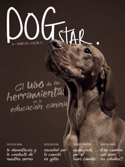 Dogstar | 006