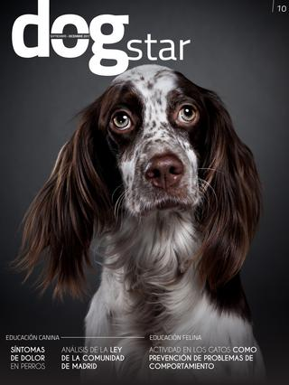Dogstar | 010